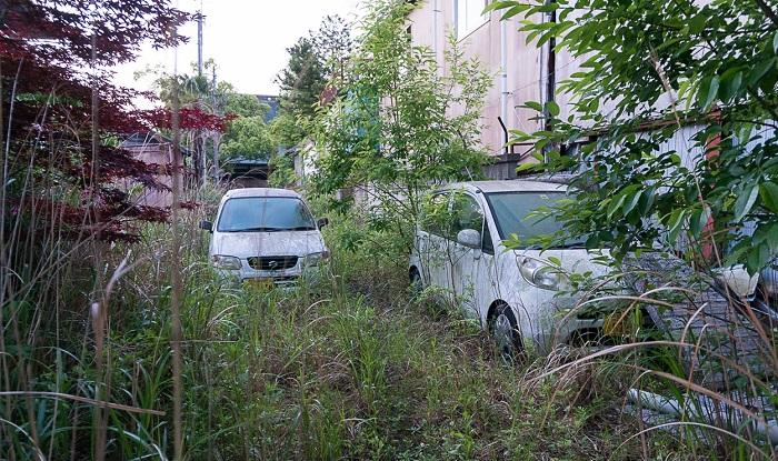 Растительность захватила и автомобили (Фукусима, Япония). | Фото: urbextour.com.