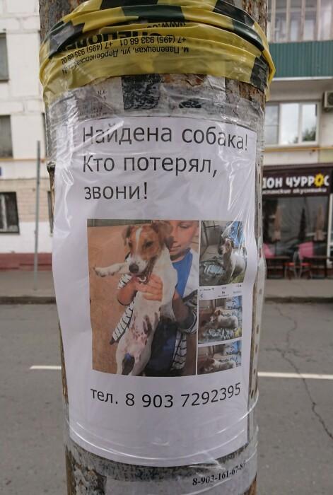 Это важно! / Фото: pikabu.ru