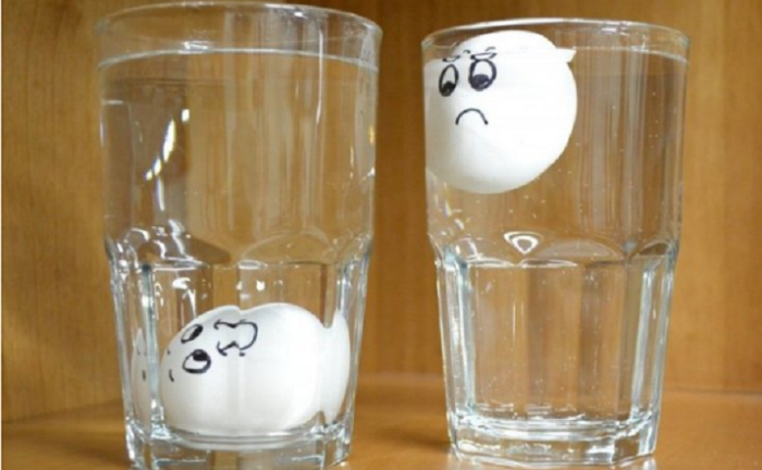 Свежее яйцо сразу тонет. / Фото: kitchenmag.ru
