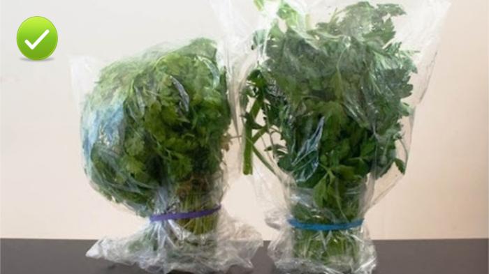 Только так нужно хранить зелень в холодильнике.