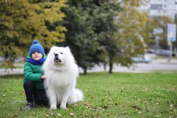Очень важно оценить уровень ответственности ребенка. / Фото: vanilla.su