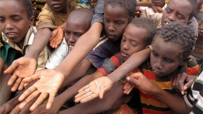 Например, в Африке голодают миллионы людей... / Фото: golosislama.com