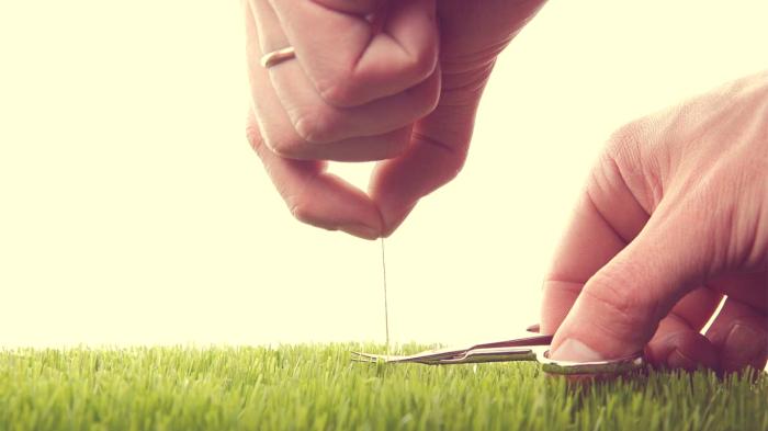 Стоит задуматься... / Фото: psicoactiva.com