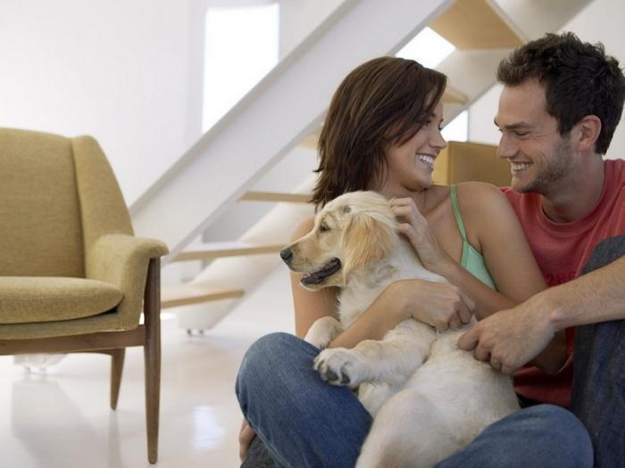Не все супружеские пары сегодня стремятся завести детей. / Фото: sobakino.com