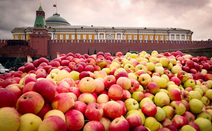 Да я прямо за неделю возьму и съем их все! / Фото: rbc.ru