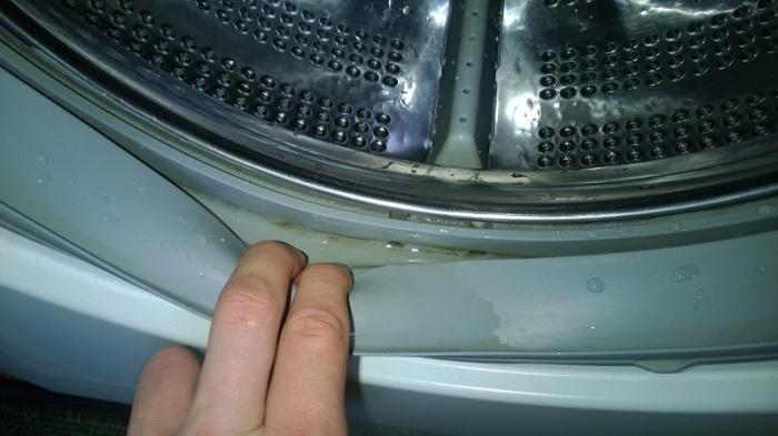 Такие прекрасные дыры образовались в резиновом ободке стиральной машины, который не протирали после стирок. / Фото: 5zvezd.kiev.ua