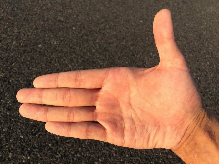 Безымянный палец альфа-самца. / Фото: darmaga.ru
