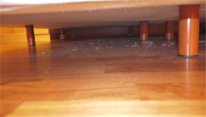 Современные пылесосы приникнут под любое спальное место, поверьте!