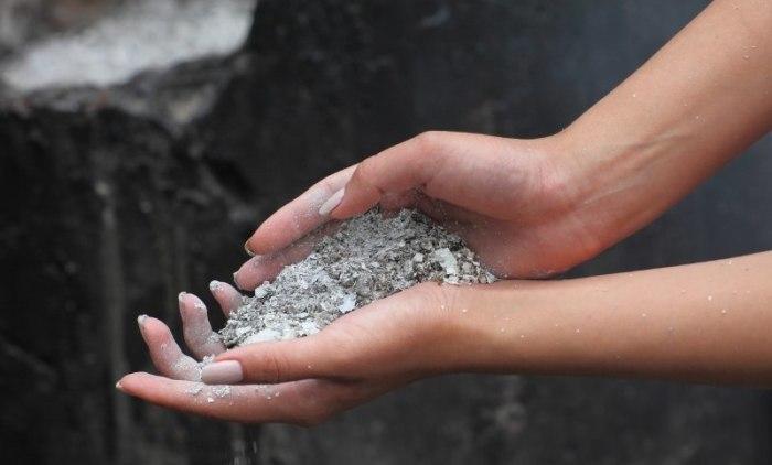 Совершенно бесплатное удобрение. / Фото: sadovodu.com
