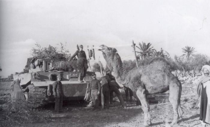 Верблюжьи мины. | Фото: warhead.su.
