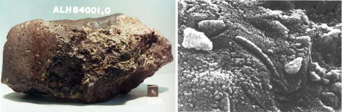 Марсианский метеорит.