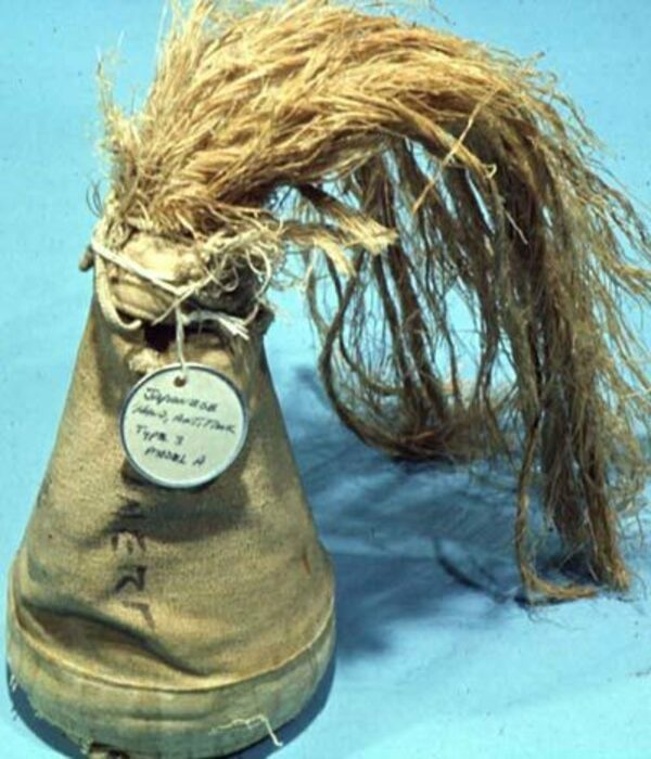 «Лисий хвост», Type 3| Фото: warhead.su