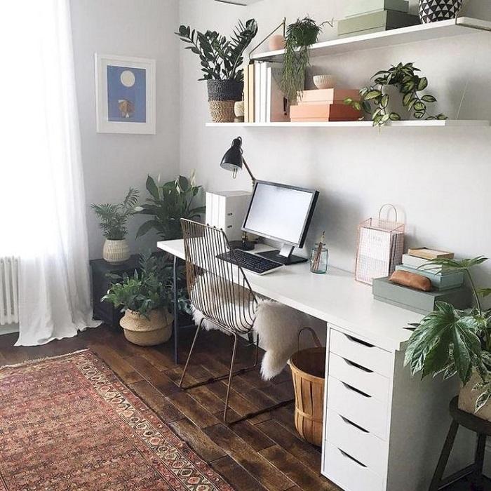 Комнатное растение на рабочем столе имеет много плюсов. / Фото: pinterest.ru