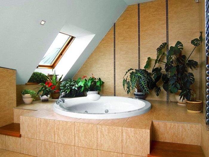 Растения оживят интерьер и очистят воздух. / Фото: vazony.com
