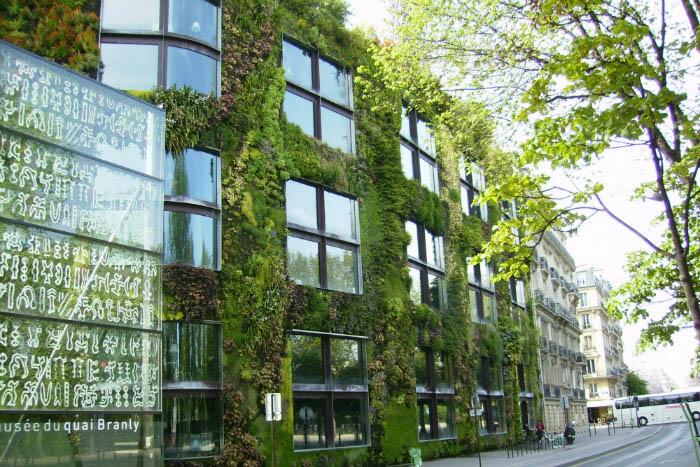Зеленый фасад в контексте города. | Фото: arch-sochi.ru