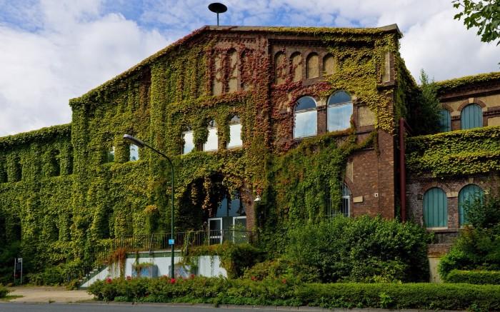 Озеленение старого здания. | Фото: propertytimes.com.ua
