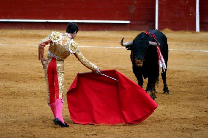 Красная тряпка для быка - вообще не красная. /Фото: cont.ws