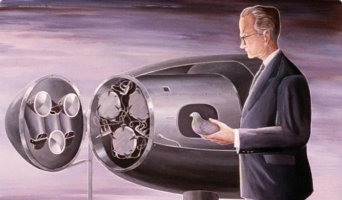 Пожалуй, одна из самых оригинальных бомб Второй мировой. /Фото: yaplakal.com