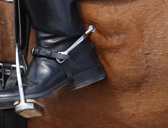 С появлением стремян шпоры кардинально сменили на специализацию. /Фото: eurodressage.com