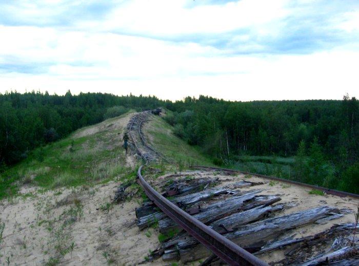 В некотором смысле проект можно назвать реинкарнацией нереализованной в СССР Трансполярной магистрали. /Фото: rg.ru