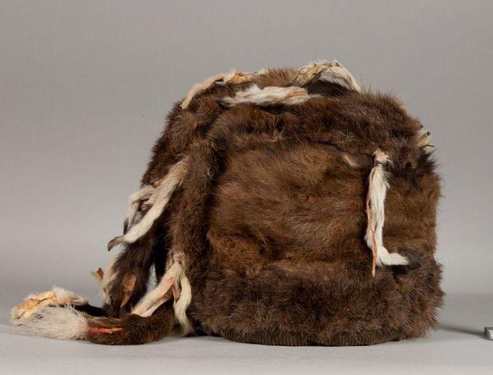 Примерно так выглядели бобровые шапки индейцев. /Фото: pinterest.at