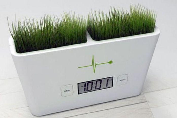 Органические часы, которые заряжаются сами. /Фото: morefactov.ru