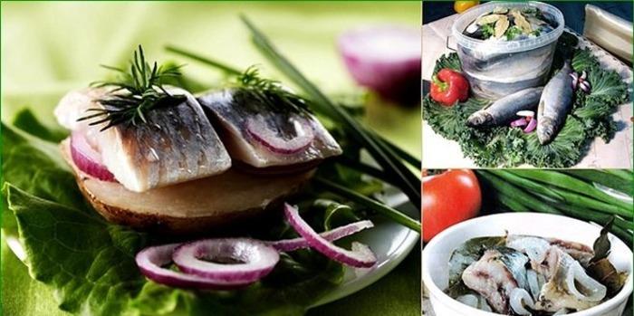 К рыбе нужно как следует присмотреться. /Фото: bolshoyvopros.ru