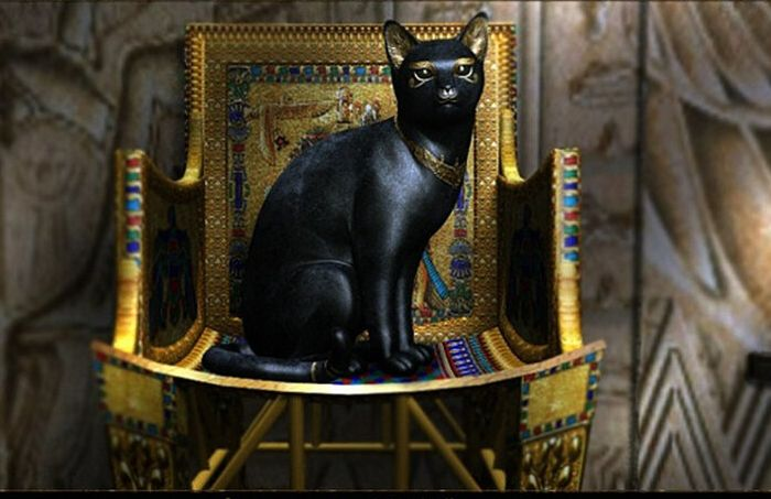 В Древнем Египте был культ кошки. /Фото: voronezhvet.ru