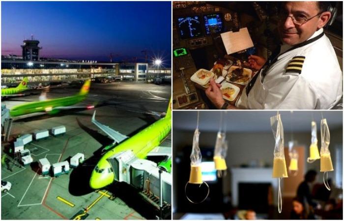 6 правил для экипажа самолета, о которых они предпочитают умалчивать