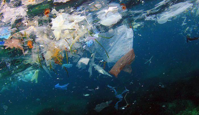 Топливо и фильтры для воды: 4  способа полезной переработки пластика