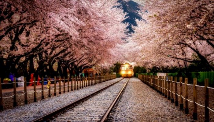 Трудно найти более красивую станцию. /Фото: volynpost.com