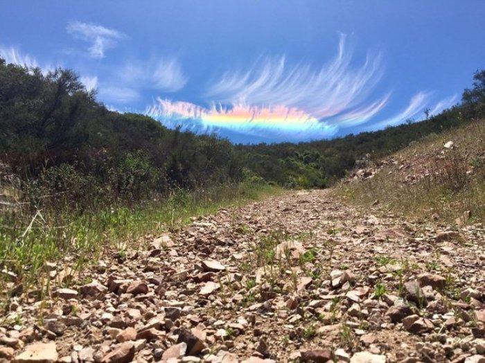 Огненная радуга из Калифорнии. /Фото: nat-geo.ru
