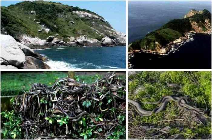 Самый опасный остров на планете. /Фото: i-fakt.ru