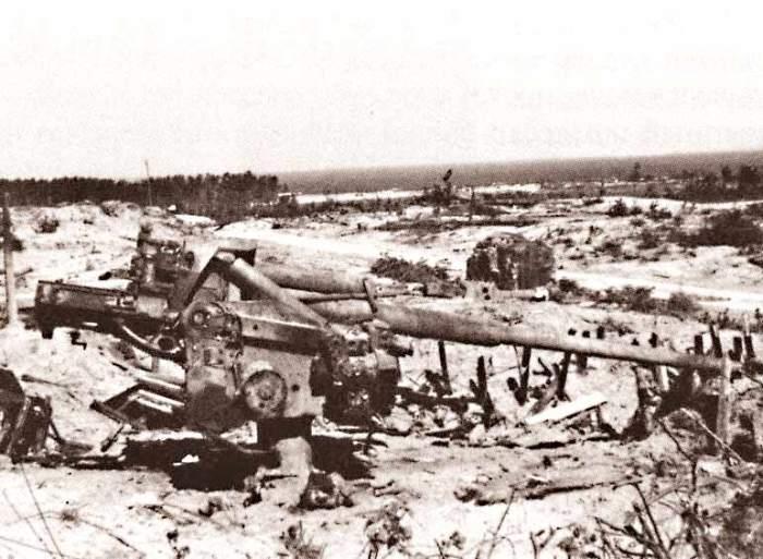 Береговая батарея советских войск во время обороны Таллина. /Фото: history.doc.ru