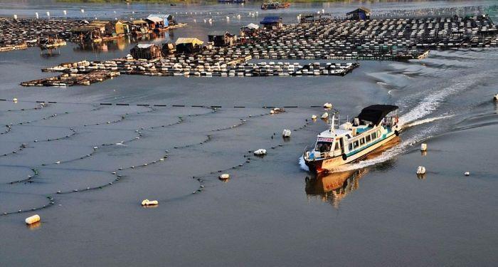 Морская промышленность очень развита в Китае. /Фото: animalworld.com.ua