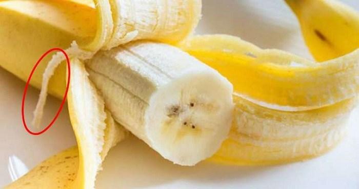 «Банановые веревочки» именуются научным термином с биологическим уклоном. /Фото: kakhacker.ru