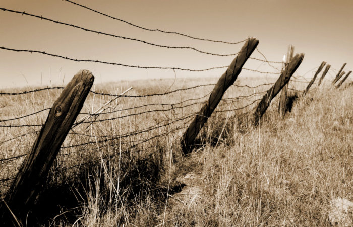 В конце 19 века колючая проволока получала принципиально новое применение. /Фото: zibler.ru