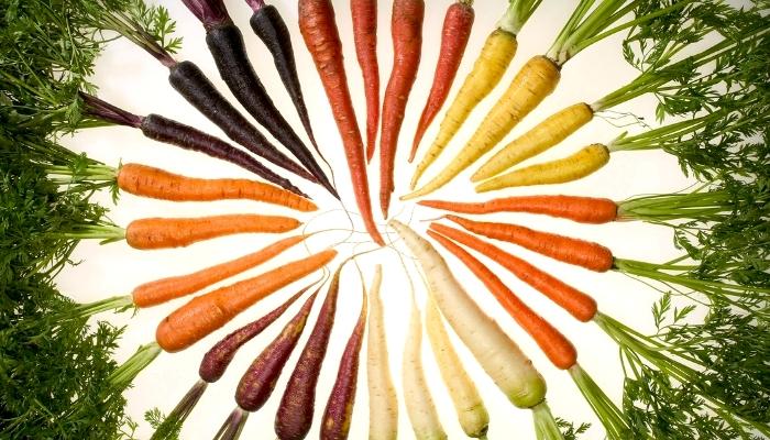 Морковка также раньше была несколько иного цвета. /Фото: discoverychannel.ru