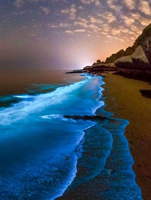 Светящиеся волны - красивейшее зрелище. /Фото: pinterest.com