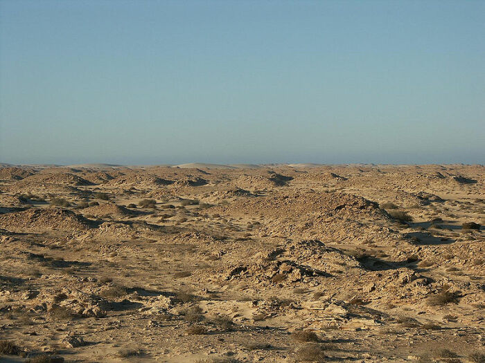 В большинстве своем территория Западной Сахары так и остается пустынной. /Фото: wikipedia.org