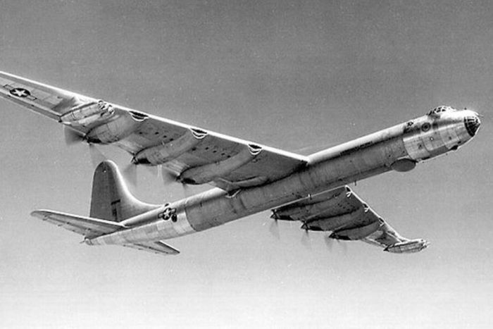 Самолет В-36. /Фото: animalworld.com.ua