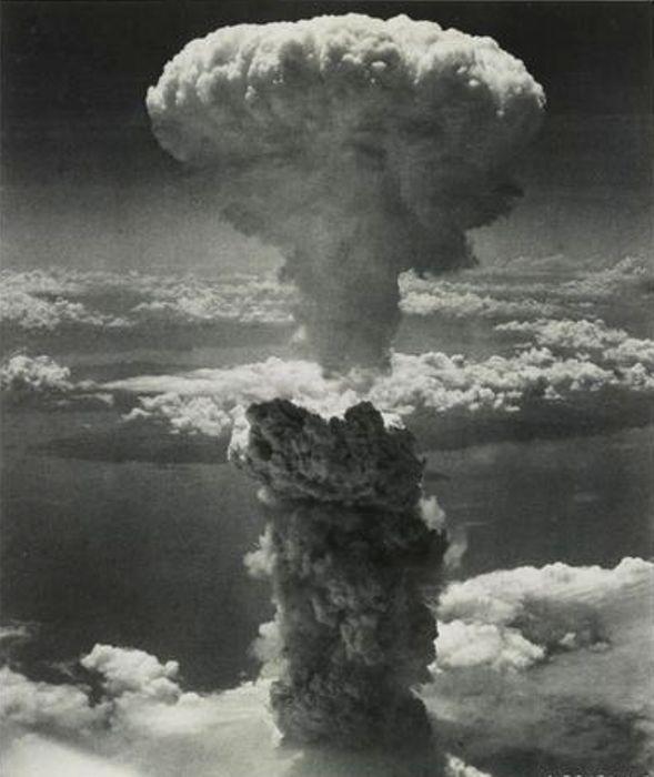 Мир узнал о смертоносности ядерного оружия. /Фото: http://animalworld.com.ua