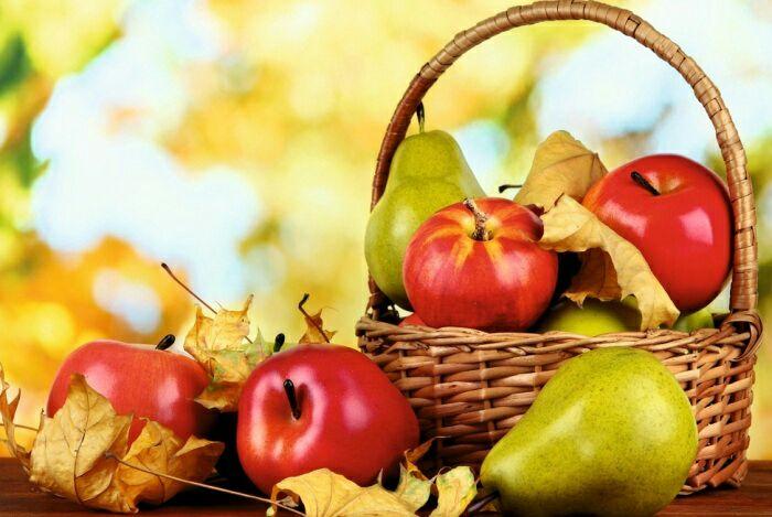 Не все плодовые одинаково полезны. /Фото: 5-nt.ru