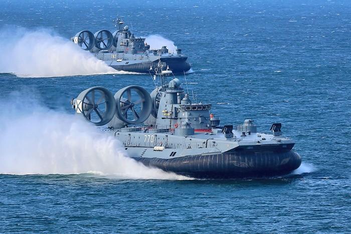 Очень скоро «Зубров» станет больше. /Фото: wikiрedia.org