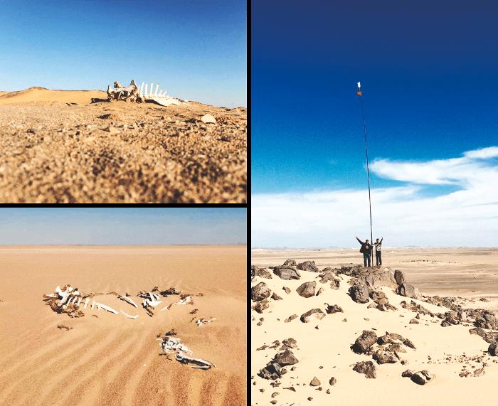 Кусок пустыни, где гибнет все живое, никого не интересует. /Фото: brodude.ru