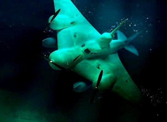 Как рыба в воде, как птица в небе. /Фото: back-in-ussr.com
