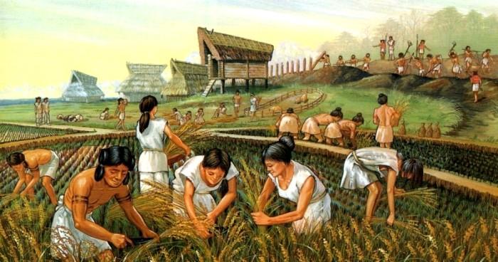 Земледелие в Амазонии - тоже довольно древнее занятие. /Фото: kramola.info