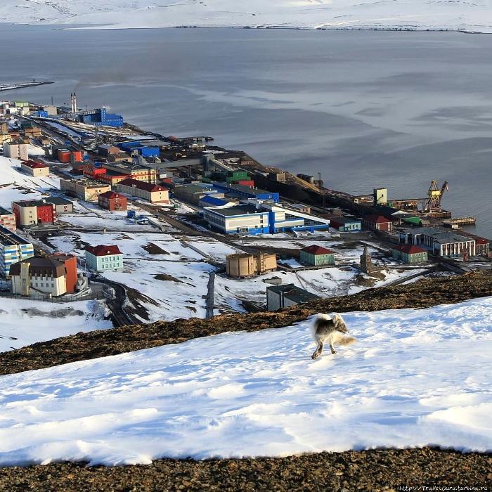 Россия сегодня - единственная страна, которая пользуется возможностями трактата. /Фото: turbina.ru