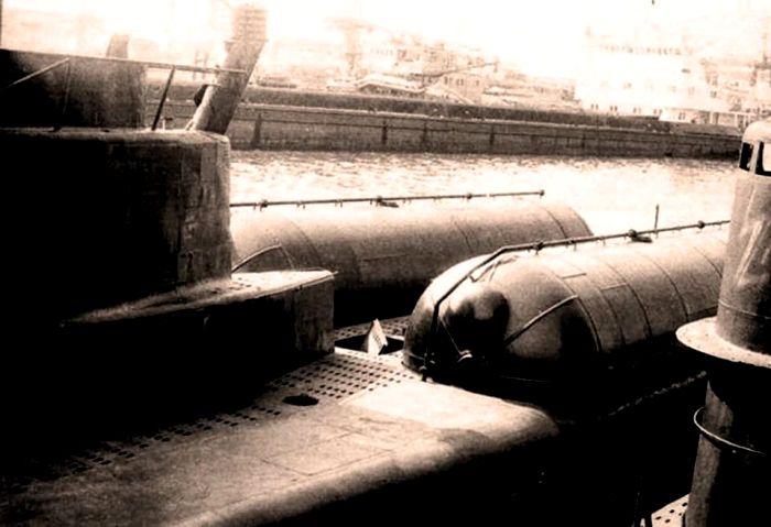 Энергетические установки ЭХГ были хорошо видны. /Фото: udachnyj-enot.com.ua