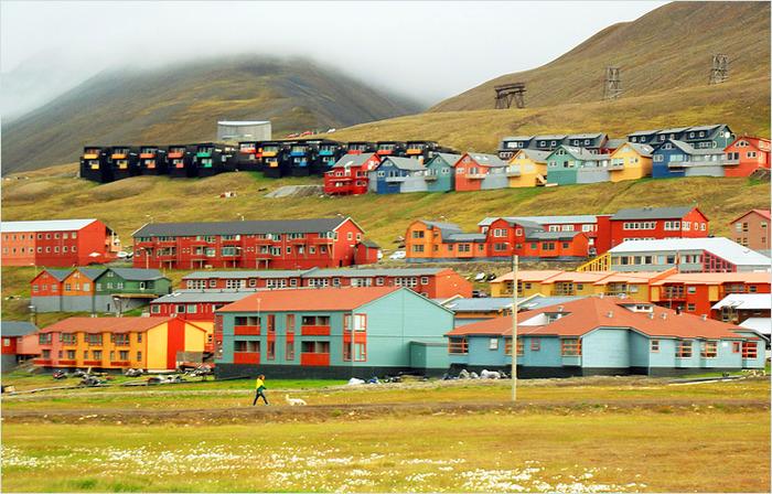 Разнообразие оттенков на крайнем Севере. /Фото: livejournal.com